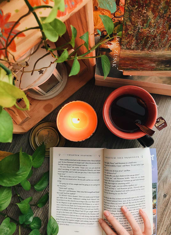 Bohemian Book Photography